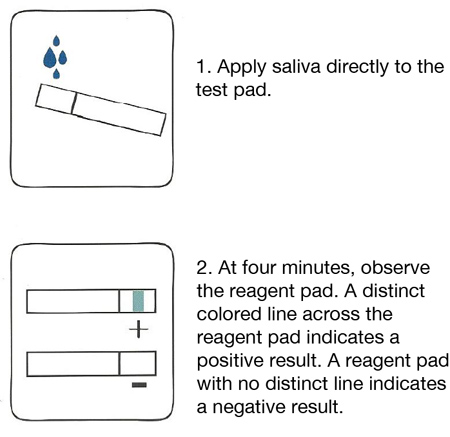 Alco-Screen 02 Alcohol Test Strips DOT Approved