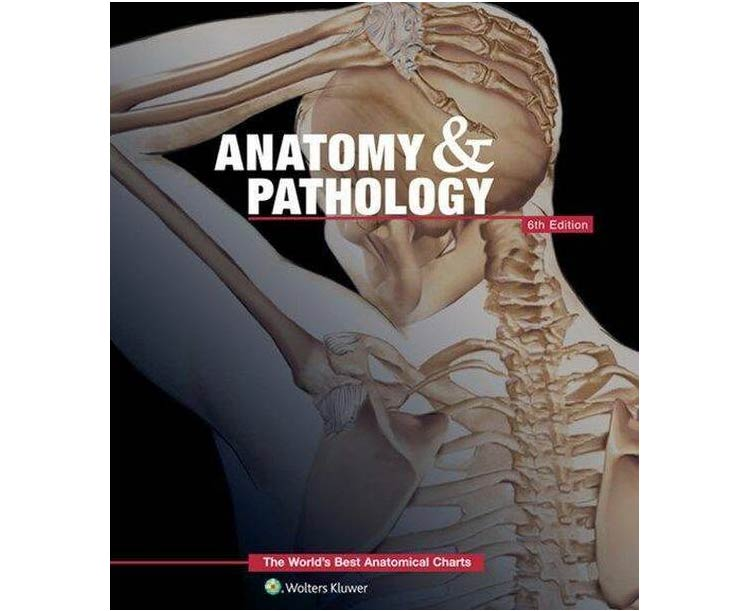 Anatomical World Wide Anatomy and Pathology: The Worlds Best Anatomical Charts