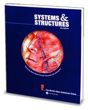 Anatomical World Wide Systems and Structures: The Worlds Best Anatomical Charts